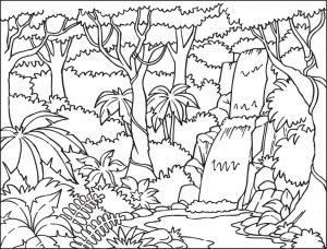 Gambar Mewarnai Pemandangan Air Terjun Hutan