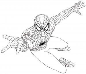 Gambar Mewarnai Spiderman Jaring