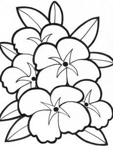 Gambar Mewarnai Bunga