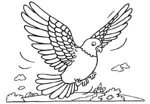 Burung Memangsa