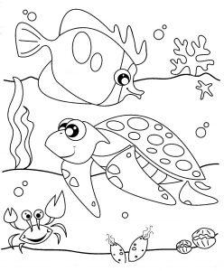Gambar Mewarnai Binatang Laut Kura Kura