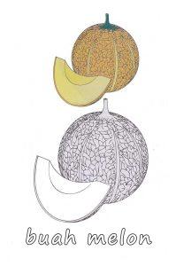 Gambar Mewarnai Buah Melon 1