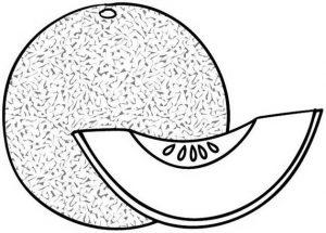 Gambar Mewarnai Buah Melon 3