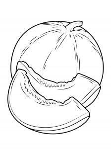 Gambar Mewarnai Buah Melon 5