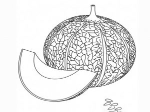 Gambar Mewarnai Buah Melon 6