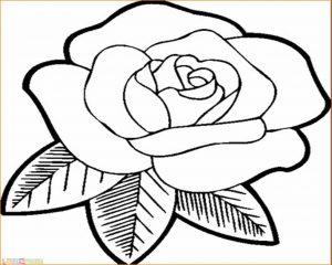 Gambar Mewarnai Bunga 07 Marimewarnai