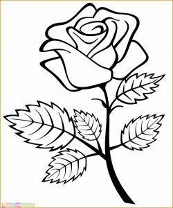 Gambar Mewarnai Bunga 10 Marimewarnai