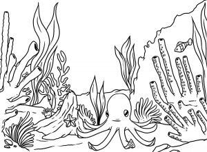 Mewarnai Gambar Binatang Laut