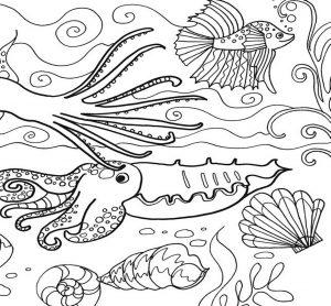 Mewarnai Gambar Binatang Laut Pemandanganya