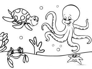 Mewarnai Gambar Binatang Laut Penyu
