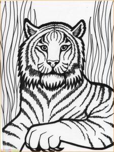 Mewarnai Gambar Harimau 11 Marimewarnai