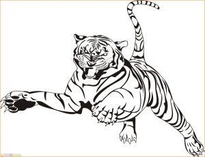Mewarnai Gambar Harimau 15 Marimewarnai