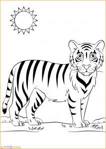Mewarnai Gambar Harimau 18 Marimewarnai