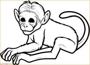 Mewarnai Gambar Monyet 01