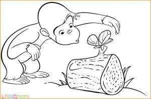Mewarnai Gambar Monyet 12