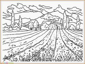 Sketsa Gambar Pemandangan Gunung 08