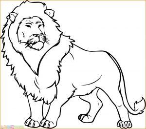 Sketsa Hewan Berkaki Empat Harimau