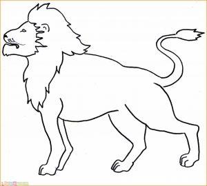 Sketsa Hewan Berkaki Empat Macan