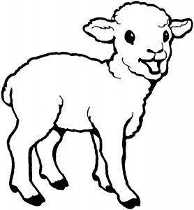 gambar mewarnai domba anak paud