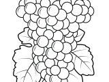 Gambar Mewarnai Buah Anggur