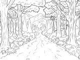 Mewarnai Gambar Hutan